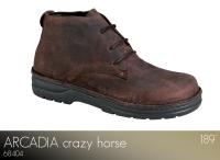 Arcadia Crazy Horse