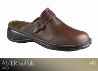 Aster Buffalo