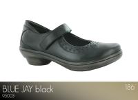 Blue Jay Black