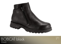 Bobcat Black
