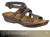 Cloud Burnt Copper