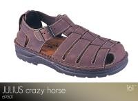 Julius Crazy Horse