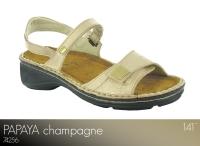 Papaya Champagne
