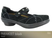 Parakeet Black