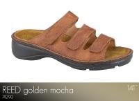 Reed Golden Mocha
