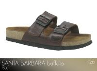 Santa Barbara Buffalo