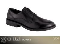 Stock Black Raven